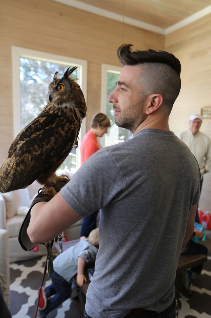 ryan owl