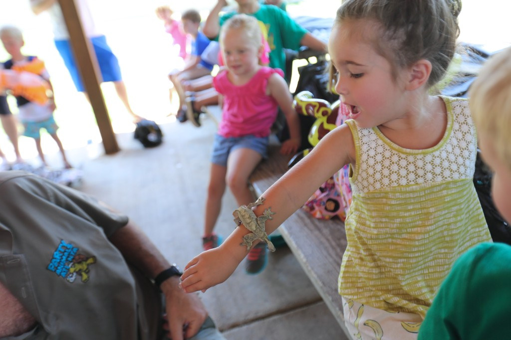 A Wild Kratts Party — with LIVE Animals!